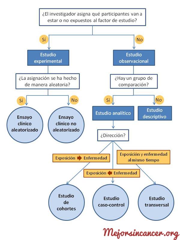 cancer_estudios_epidemiologicos_algoritmo_diseños