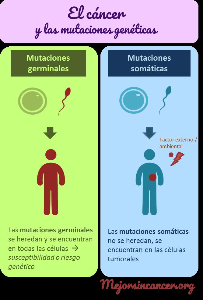 infografia_mutaciones_cancer_germinales_somaticas